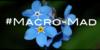 Macro-Mad's avatar
