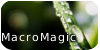Macro-Magic's avatar