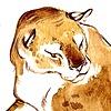 MadCHM's avatar