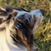 maddogdodge's avatar