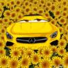 mademoiselleuni's avatar