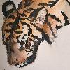 madi2themax's avatar