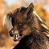 Magpieb0nes's avatar