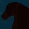 Maira-TBH's avatar