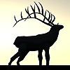 MajklArt's avatar