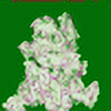 MamaPara's avatar