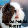 MandaPandaPhoto's avatar