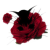 mandelbluete1262's avatar