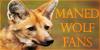 ManedWolfFans's avatar