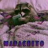 Mapachitootaku's avatar