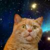 MarchStories's avatar