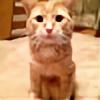 marcospaulo00's avatar