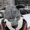margaw's avatar