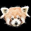 marhaus's avatar