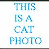 mari-kagelar's avatar