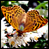 Mariflay's avatar
