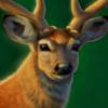 Mariigoldy's avatar