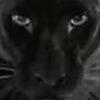 mark45xxx's avatar