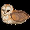 MarkMyBirds's avatar