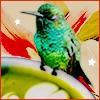 Matchavia's avatar