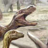 matt-raptor's avatar