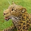 mattcummings's avatar
