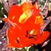 Maxillary's avatar