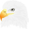 maxvision's avatar