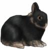 Mayli909's avatar