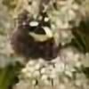 MBoulad's avatar
