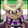 mcasowl's avatar