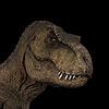 Mcflyhigh1's avatar