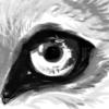 MDXIII's avatar