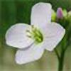 MeadowCress's avatar