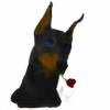MeaWolfenX's avatar