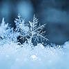 megamustafa1234's avatar