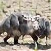 mehmetgz's avatar