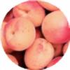 meori-meori's avatar