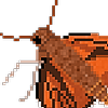 Merifrimox's avatar