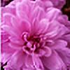 Meripihkassa's avatar