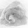 mermaidine's avatar