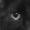 merrak's avatar
