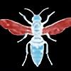 metalgolem's avatar