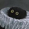 Mewball's avatar