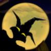 Michainyer's avatar