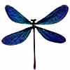 michellemariesuan's avatar