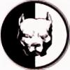 Michizemo's avatar