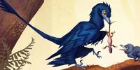 Microraptor-Club's avatar