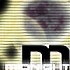 midnight13's avatar