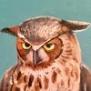 miemotio's avatar